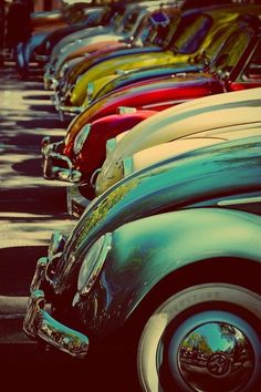 "VW Beetles - seriously, who doesn't love these?  We are still always playing ""slugbug"" in the car! (although I outlawed slugging! ha)"