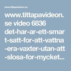 www.tittapavideon.se video 6836 det-har-ar-ett-smart-satt-for-att-vattna-era-vaxter-utan-att-slosa-for-mycket-vatten