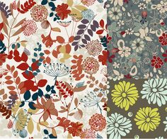 Plants,leaves,flowers and chrysanthemum vector_Vectors Download | Crazy Free vector.com
