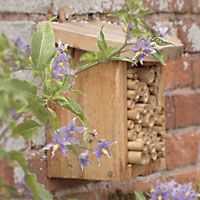 Such an attractive addition to any garden... Cedar Bug Box. #homesfornature