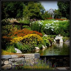8-25-2014 Garden Pond ~ Another beautiful summer's day here on the coast of Maine. *** POSTCARDS FROM FRIENDSHIP. A pic a day served fresh daily from Friendship Maine. SuperHumanNaturals.com *** #toothsoap #cure #cankersores