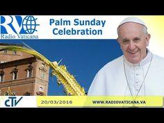 LIVE: Pope Francis celebrates Palm Sunday Mass