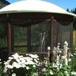 Gorgeous gazebo from a recycled satellite dish