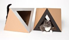 cat house - Google 검색