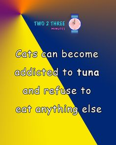 cats can get addicted to tuna