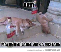 Probably a mistake…