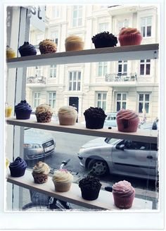 Would love to have my own cupcake shop :)