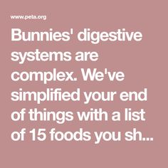 Bunnies' digestive systems are complex. We've simplified your end of things with a list of 15 foods you should never feed to your rabbit.