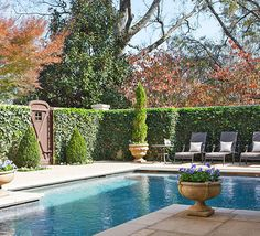 Sheltered by boxwoods, this backyard pool is serene and private. - Traditional Home ® / Photo: Reid Rolls Sheltered by boxwoods, this backyard pool is serene and private. - Traditional Home ® / Photo: Reid Rolls Outdoor Areas, Outdoor Rooms, Outdoor Living, Moderne Pools, Pool Landscape Design, Pool Remodel, Pool Fence, Pool Paving, Beautiful Pools