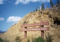 Chengjiang Fossil Site, China. Inscription in 2012. Criteria: (viii)