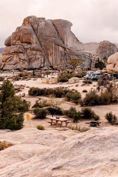There are 9 campgrounds in Joshua Tree National Park. Find the best campsites for climbing, RV campers and groups. How to find free camping on BLM nearby. Tent Camping, Outdoor Camping, Camping Chairs, Joshua Tree National Park, National Parks, Joshua Tree Camping, 5th Wheel Travel Trailers, Best Campgrounds, Cool Tree Houses