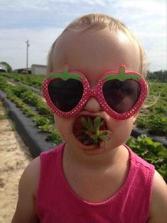 a funny baby eating strawberries