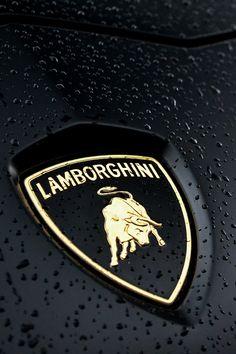 ♕ The Luxury Side of Life ♕ Lamborghini Aventador emblem Luxury Car Logos, Luxury Sports Cars, Best Luxury Cars, Sport Cars, Maserati, Bugatti, Best Lamborghini, Lamborghini Aventador Lp700 4, Ferrari Car