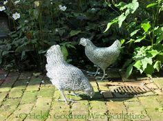Helen Godfrey - Chickens