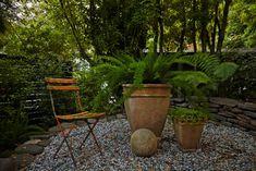Mill Valley garden vibes