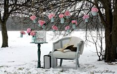 Think Spring!  The Lilypad Cottage
