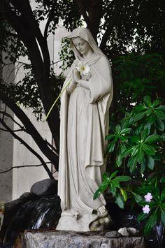 #marystatue #rosary #mary