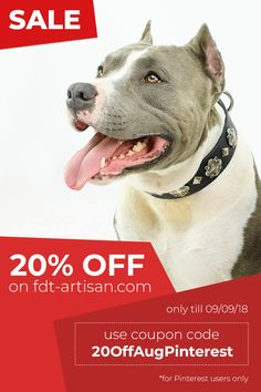 Every Dog Breed, September 9, Huge Sale, Dog Owners, Dog Breeds, Your Pet, Collars, Pitbulls, Artisan