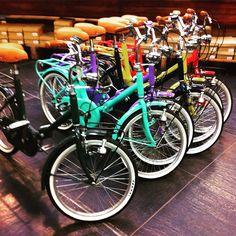 Biciclette pieghevoli Scout