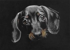"""Drawing """"white on black"""" tutorial - part 3: drawing fur In the previous parts of this tutorial [part 1 and part 2] I covered the topic of theory and practice associated with the human portraiture...."""