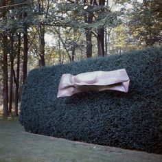 The Most Beautiful Fall Gardens in Vogue   Vogue Garden Hedges, Terrace Garden, Miranda Brooks, Landscape Design, Garden Design, Tom Stuart Smith, Beech Hedge, Most Beautiful Gardens, Houghton Hall