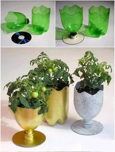 Make yourself a vase using recycled plastic soda bottles!