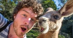 #Blessed quokka guy takes animal selfies all over the world for a living : Talk about a dream career.