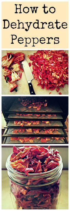 Dehydrating is one of the easiest and best food storage methods~ preserve your harvest and keep all of the vitamins and minerals intact! How to dehydrate peppers for food storage, an alternate way from canning and freezing to preserve your summer harvest. Canning Food Preservation, Preserving Food, Cocina Natural, Canned Food Storage, Long Term Food Storage, Survival Food, Survival Quotes, Survival Skills, Prepper Food