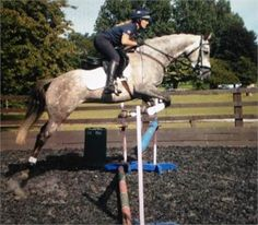 Horse for sale - Super jumping grey mare,15.5hh,5years old  http://www.equineclassifieds.co.uk/Horse/super-jumping-grey-mare155hh5years-old-listing-882.aspx#.U8jwFEATCZY