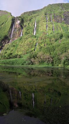 #Flores island, #Azores - Reflecting waterfalls - Portugal