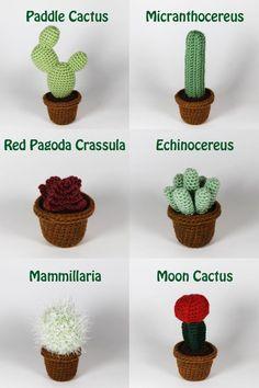 Realistic crocheted cacti and succulents Crochet Amigurumi, Amigurumi Patterns, Crochet Toys, Knit Crochet, Crochet Patterns, Cactus En Crochet, Love Crochet, Crochet Flowers, Cactus Craft