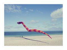 La Lettre de la Photographie -     La Lettre de la Photographie    [ back to story ]    The girl and the Snake © René & Radka