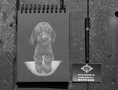 Interested in pet portrait? Starting from £50 for A5.... Pm me, email me (sproodledoodle@gmail.com) ...get in touch...  #ink #stippling #dotting #pet #portrait #commision #dog Admin Work, Best Portraits, Draw Something, Ink Illustrations, Stippling, White Ink, How To Take Photos, A5, Black Backgrounds