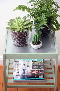 AnneLiWest|Berlin #urban jungle #plants #breakfastroomgreen #Farrowandball #cactus candle #ikeahacking