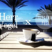 Electro Posé (WDEF) Mixtape N°2 X HERR VOGEL (Free Download) by Electro posé on SoundCloud
