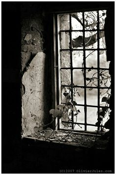 decay by Olivier Jules  Old Windows, Windows And Doors, Abandoned Buildings, Abandoned Places, Looking Out The Window, Window View, Through The Window, Black N White Images, Photos