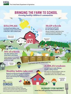 New USDA census results show million kids participating in farm to school Hydroponic Farming, Hydroponic Growing, Diy Hydroponics, Homeschool High School, Watermelon Nutrition Facts, Healthy Nutrition, School Programs, Nutrition Education, Nutrition Classes