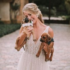 Bride photography holding two small puppies, dog outfit ideas {Rachel Marie Appelo Saxon}