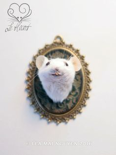 Taxidermy Mouse Head Mount  Turquoise by LeHeartDesign on Etsy