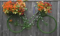 Green Bike Hanging with Nasturtium Flowers by Barry Pettinger.