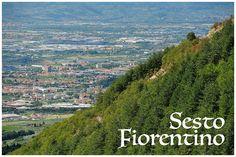 Sesto Fiorentino, provincia di Firenze: trovi i nostri prodotti anche alla Macelleria Mannucci Alessio di via Arrigo Boito!