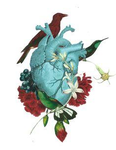 Heart Gif Source by karen_counts Art And Illustration, Heart Gif, Medical Art, Anatomy Art, Body Art Tattoos, Art Inspo, Collage Art, Fantasy Art, Art Photography