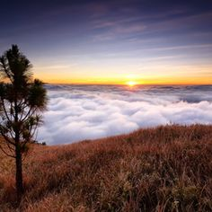 Mount Pulag - Sea of Clouds and Amazing Sunrise, Philippines