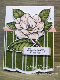 Stampin' Up! Fun Fold Cards, Folded Cards, Magnolia Flower, Sweet Magnolia, Stamping Up Cards, Rubber Stamping, Magnolia Stamps, Drake, Card Sketches