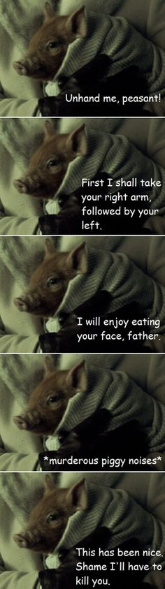 Because one can never have too much adorable killer piggy. #Hannibal