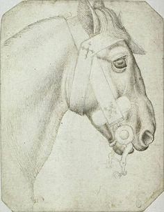 Pisanello, head and neck of a bridled horse, mid 15C. Codex Vallardi 2357, Louvre, Paris.
