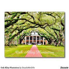 Oak Alley Plantation Postcard