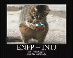 This is the first pin I've added on INTJ/ENFP since Jack tested as an ENFP and Hadassah agreed. I officially disagree with this, so I have no idea why I'm adding it.