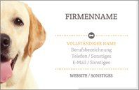 Why You'll Love White Labrador Retriever Signature Business Cards Vistaprint Business Cards, Free Business Cards, Business Card Design, Company Names, Company Logo, Aubry, White Labrador, Design Page, Puppy Classes