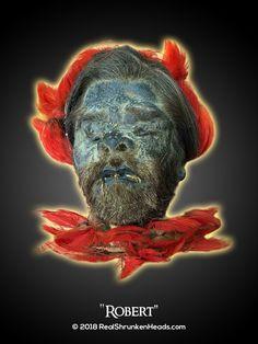"""Real Shrunken Head Photo.  """"Robert"""" www.RealShrunkenHeads.com Tsantsa: Oddities & Curiosities"""